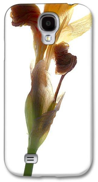 Botanical Galaxy S4 Cases - Iris Yellow Galaxy S4 Case by Julia McLemore