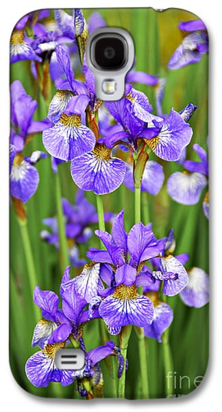 Irises Galaxy S4 Case by Elena Elisseeva