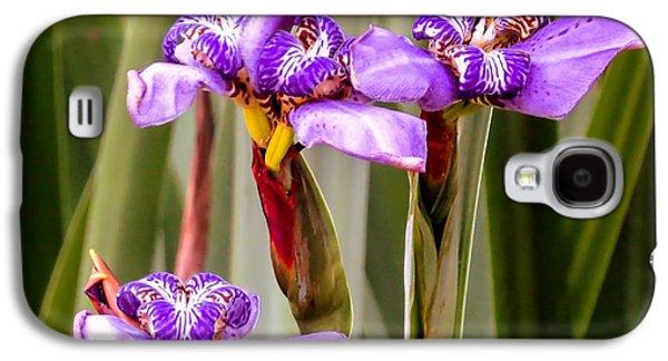 Garden Photographs Galaxy S4 Cases - Irises Galaxy S4 Case by Zina Stromberg