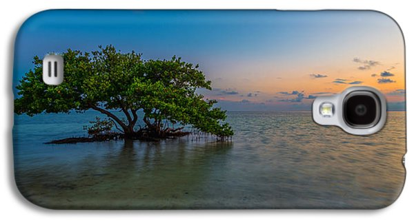 Blue Green Water Galaxy S4 Cases - Isolation Galaxy S4 Case by Chad Dutson