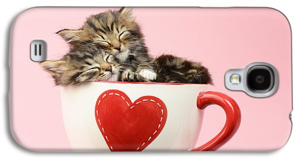 Cats Digital Art Galaxy S4 Cases - It Must Be Love Galaxy S4 Case by Greg Cuddiford