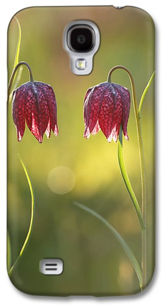 Meleagris Galaxy S4 Cases - It Takes Two Galaxy S4 Case by Roeselien Raimond