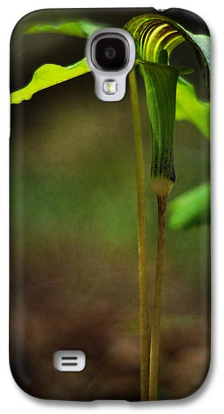 In The Shade Galaxy S4 Cases - Jack-in-the-Pulpit Galaxy S4 Case by Rebecca Sherman