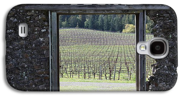Pastoral Vineyards Galaxy S4 Cases - Jack London Ranch Winery Ruins 5D22132 Galaxy S4 Case by Wingsdomain Art and Photography