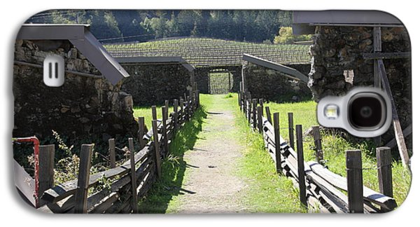 Pastoral Vineyards Galaxy S4 Cases - Jack London Ranch Winery Ruins 5D22180 Galaxy S4 Case by Wingsdomain Art and Photography