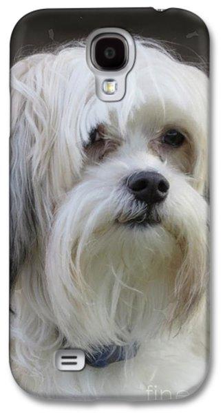 Puppy Digital Galaxy S4 Cases - Jacks Bad Hair Day Galaxy S4 Case by Ella Kaye Dickey