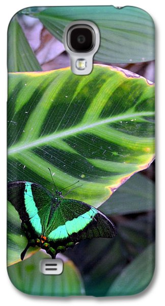 Warm Jewelry Galaxy S4 Cases - Jade Butterfly with vignette Galaxy S4 Case by Carla Parris