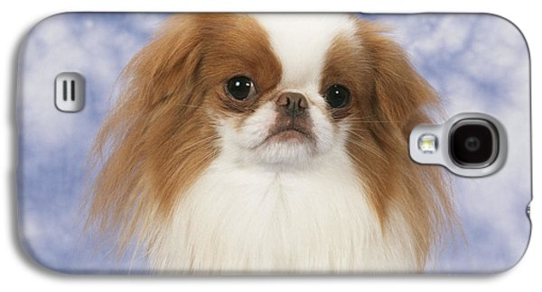 Chin Up Galaxy S4 Cases - Japanese Chin Dog Galaxy S4 Case by John Daniels