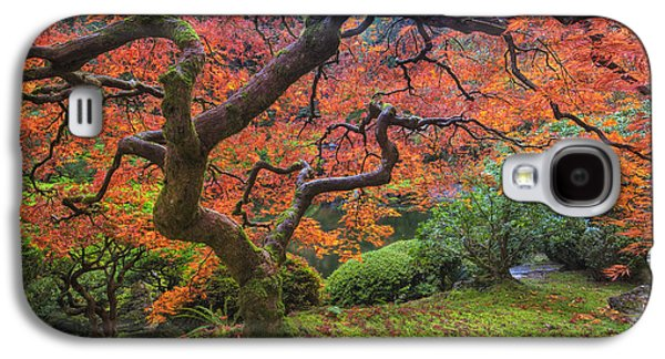 Japanese Maple Tree Galaxy S4 Case by Mark Kiver