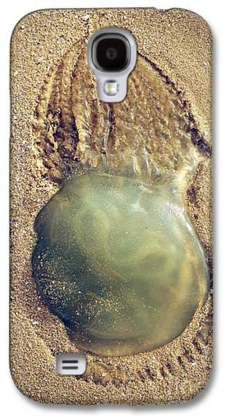 Alga Galaxy S4 Cases - Jellyfish Galaxy S4 Case by Carlos Caetano