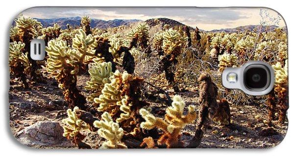 Garden Scene Galaxy S4 Cases - Joshua Tree National Park 3 Galaxy S4 Case by Glenn McCarthy Art and Photography