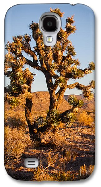Recently Sold -  - Haybale Galaxy S4 Cases - Joshua Tree Galaxy S4 Case by Robert Bales