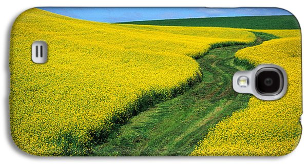 Contour Farming Galaxy S4 Cases - July Canola Galaxy S4 Case by Latah Trail Foundation