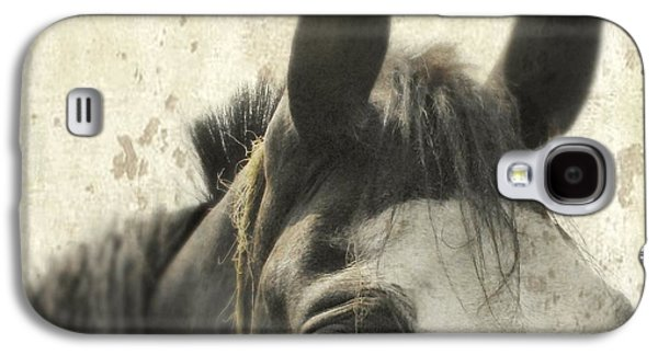 Horse Images Galaxy S4 Cases - Just A Horse Galaxy S4 Case by Gothicolors Donna Snyder