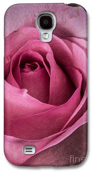 Bright Colors Glass Art Galaxy S4 Cases - Just A Rose Galaxy S4 Case by Mitch Shindelbower
