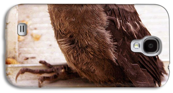 Baby Bird Photographs Galaxy S4 Cases - Just Dropped By Galaxy S4 Case by John Lautermilch