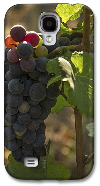 Vintner Galaxy S4 Cases - Just Waking Up Galaxy S4 Case by Jean Noren