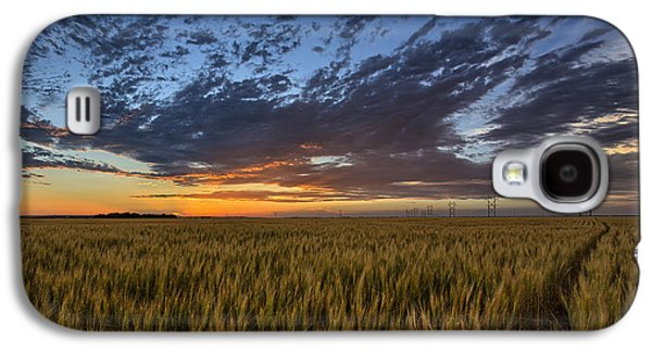 Field Galaxy S4 Cases - Kansas Color Galaxy S4 Case by Thomas Zimmerman