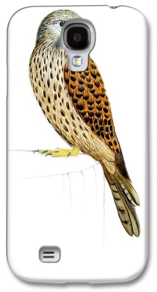 Feather Drawings Galaxy S4 Cases - Kestrel Galaxy S4 Case by Ele Grafton