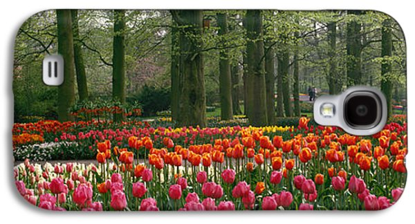 Visitor Galaxy S4 Cases - Keukenhof Garden, Lisse, The Netherlands Galaxy S4 Case by Panoramic Images