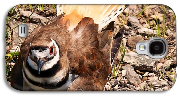 Killdeer On Its Nest Galaxy S4 Case by Chris Flees