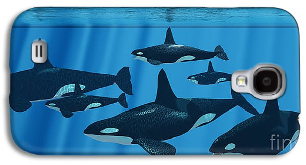 Whale Digital Art Galaxy S4 Cases - Killer Whale Family Galaxy S4 Case by Corey Ford