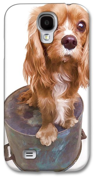 Spaniels Galaxy S4 Cases - King Charles Spaniel Puppy Galaxy S4 Case by Edward Fielding