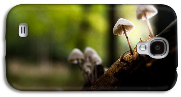 Toadstools Galaxy S4 Cases - Kings Wood Galaxy S4 Case by Ian Hufton