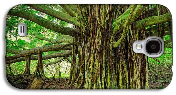 Tree Roots Galaxy S4 Cases - Kipahulu Banyan Tree Galaxy S4 Case by Inge Johnsson