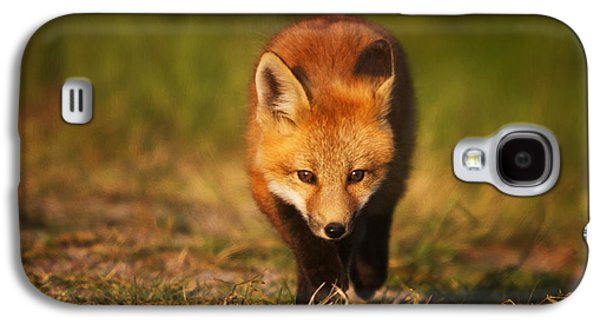 Fox Kit Galaxy S4 Cases - Kit on the Prowl Galaxy S4 Case by Mark Kiver