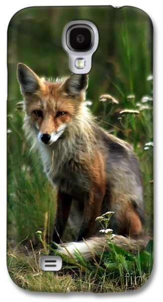 Haybale Galaxy S4 Cases - Kit Red Fox Galaxy S4 Case by Robert Bales