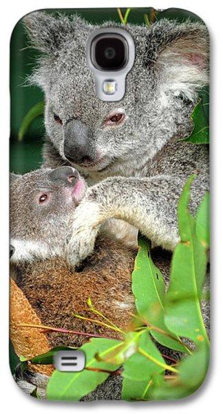 Koalas Galaxy S4 Case by Bildagentur-online/mcphoto-schulz