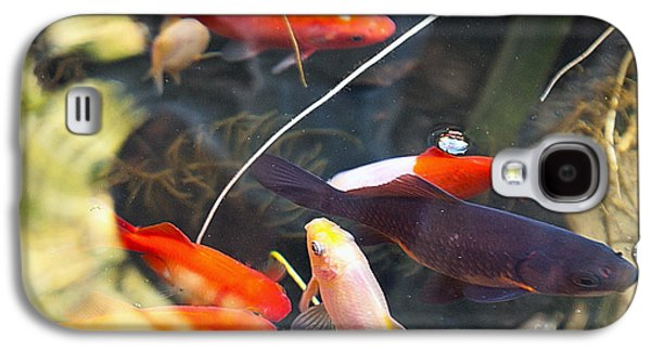 San Francisco Famous Photographers Galaxy S4 Cases - Koi Pond the Symbol of Love and Friendship Galaxy S4 Case by Artist and Photographer Laura Wrede