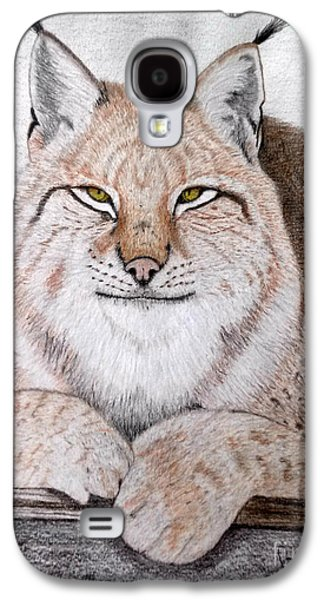 Bobcats Drawings Galaxy S4 Cases - Koschka Galaxy S4 Case by Becca Miller