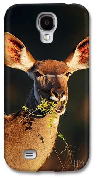 Feeding Photographs Galaxy S4 Cases - Kudu portrait eating green leaves Galaxy S4 Case by Johan Swanepoel
