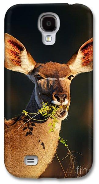 Feeding Galaxy S4 Cases - Kudu portrait eating green leaves Galaxy S4 Case by Johan Swanepoel