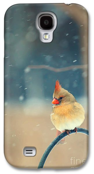 Lady In Waiting Galaxy S4 Case by Kay Pickens