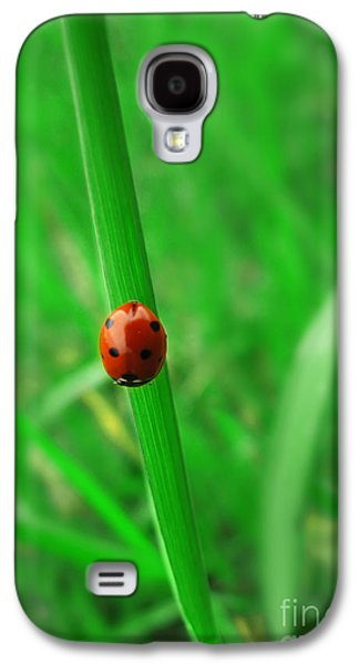 Abstracts Pyrography Galaxy S4 Cases - Ladybird Galaxy S4 Case by Jelena Jovanovic