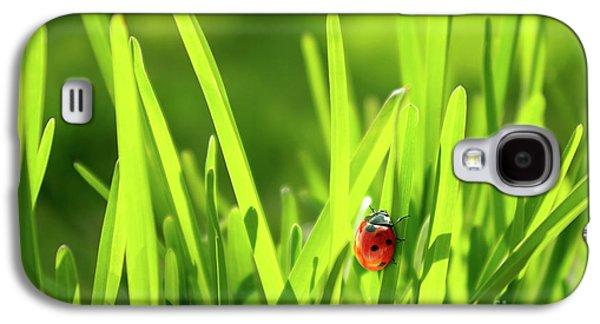 Grass Galaxy S4 Cases - Ladybug in Grass Galaxy S4 Case by Carlos Caetano