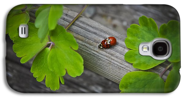 Brightly Galaxy S4 Cases - Ladybugs Mating Galaxy S4 Case by Aged Pixel