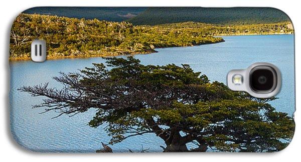 Landscapes Photographs Galaxy S4 Cases - Laguna Capri Tree Galaxy S4 Case by Inge Johnsson