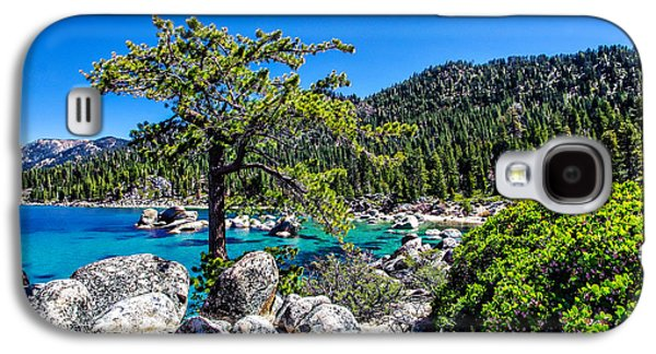 Snow-covered Landscape Photographs Galaxy S4 Cases - Lake Tahoe Bonsai Tree Galaxy S4 Case by Scott McGuire