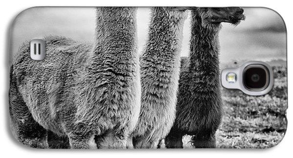 Lama Lineup Galaxy S4 Case by John Farnan