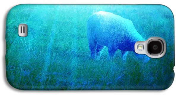 Sheep Digital Galaxy S4 Cases - Lamb In Morning Light Galaxy S4 Case by Jan Amiss Photography
