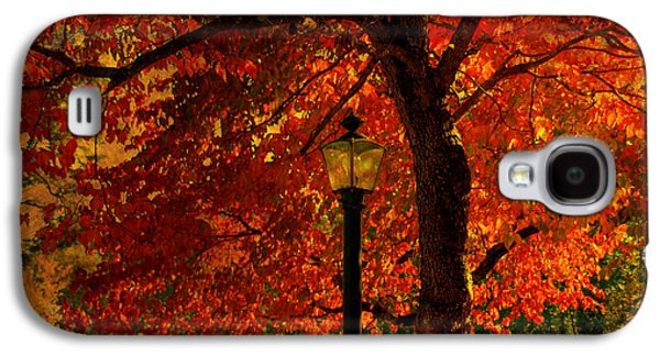 Autumn Scenes Galaxy S4 Cases - Lantern in autumn Galaxy S4 Case by Susanne Van Hulst