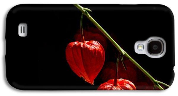 Lantern Trio Galaxy S4 Case by Rebecca Cozart