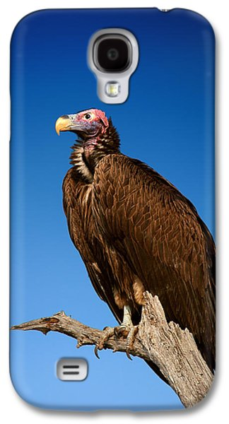 Lappetfaced Vulture Against Blue Sky Galaxy S4 Case by Johan Swanepoel