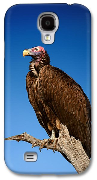 Raptors Galaxy S4 Cases - Lappetfaced Vulture against blue sky Galaxy S4 Case by Johan Swanepoel