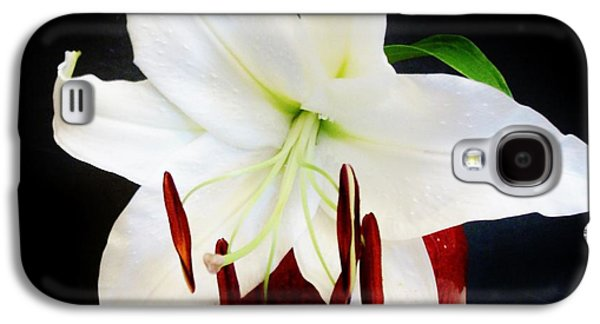 Green Posters Digital Galaxy S4 Cases - Large Asian Bloom in White Galaxy S4 Case by Marsha Heiken
