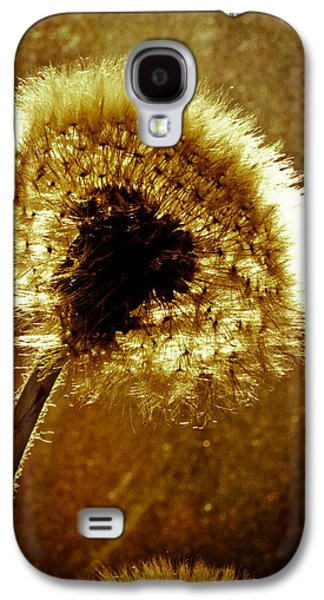 Dreamscape Galaxy S4 Cases - Last light of day Galaxy S4 Case by Bob Orsillo